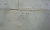 stucco_pompeji_betonoptik_092